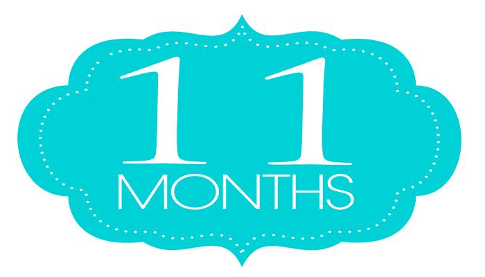 Happy 11 Month Anniversary